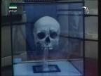 إضغط لمشاهدة ''الخفاش مصاص الدماء (عالم الإفتراس) ''