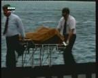 إضغط لمشاهدة ''الهروب من الأعماق (انجازات علمية) ''
