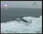 إضغط لمشاهدة ''رحلة الي المحيط الهادي (رحلات بحرية) ''