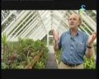 إضغط لمشاهدة ''طريق الحدائق  (جولة عالمية) ''