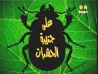 علي جزيرة الحشرات