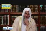لزوم تقوى الله سبحانه وتعالى (20/7/2014) معراج الروح