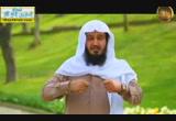 جمال المؤمن( 26/7/2014) قبيل الغروب