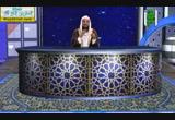 سورة آل عمرن ج1( 26/8/2014)  مواقع النجوم