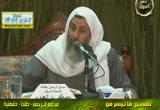 سورة محمد من الآية (7) إلي الآية (15) (28/12/2012) تفسير سورة محمد