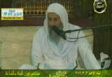 سورة التكاثر   ( 2/12/2012) تفسير  سورة التكاثر