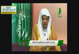تفسير الاستطاعه بالزاد والراحلة - زاد الحاج