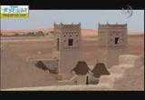 ( 16)موقعة الجمل وبيعة علي رضي الله عنه(14/9/2014) الخلفاء الراشدون
