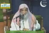 ( 16)المرحلة الثالثة-قتال الصديق للمرتدين وقضاؤه عليهم -  سيرة أبو بكر الصديق رضى الله عنه