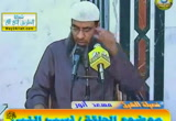 نسب النبي صلى الله عليه وسلم- السيرة النبوية