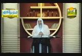 سيرة رسول الله نظرة الى العهد المكى ( 17/3/2015 ) قصص الانبياء