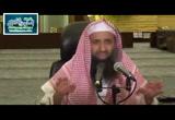 24- 1 باب أركان الصلاة - شرح كتاب زاد المستنقع