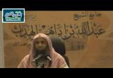 31- باب السنن الرواتب - شرح كتاب زاد المستنقع
