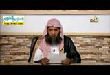 نشأةالنحو(26/1/2016)اللغةالعربيه