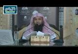 المجلس الثامن (شرح ثلاثيات مسند الأمام أحمد )