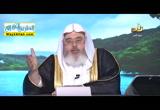 الايمان باليوم الاخر - الجنة والنار ( 19/2/2016 ) بصائر