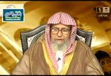فتاوي وكيف يتحقق التوحيد (13/8/1435 هـ)(فتاوي علي الهواء)