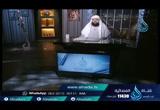 الصراع بين إبراهيم عليه السلام والباطل (17/2/2016) (أيام الله)