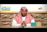 الدرس الثامن - متابعة الكلام عن حق العلماء ( 8/3/2016 ) التربية الاسلامية