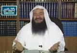 تفسير سورة الطور من الآية(39):الآية(49)