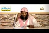 المحاضرة الخامسة عشر - جمع المذكر السالم وملحقاته ( 29/3/2016 ) اللغة العربية