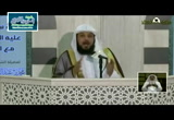 قصة سليمان - عليه السلام - مع الجن (10/8/1435) الدروس القرآنية
