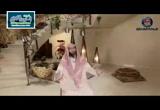 نظافة الطرقات و البيوت (8/6/2016)مكارم