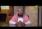 بيت النمل (23/6/2016) سنريهم آيَاتِنَا