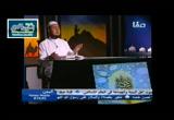 ميمونة بنت الحارث (24/6/2016) رضي الله عنهم
