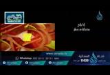 علاقةالمسلم بالنبى صلى الله عليه وسلم (9/6/2016)السراج المنير 4