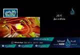 نهجالنبىفيالتعاملفيالبيعوالشراء(2/7/2016)السراجالمنير4