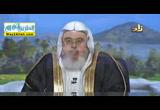 الملك يناديك ( 1/7/2016 ) هدي وبينات