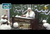 التوبة(5/7/2016)بصائرالنصر