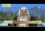 إنا أنزلناه في ليلة القدر (27/6/2016) فقهيات رمضانية