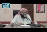 تفسير سورة آل عمران من الأية (22:29)