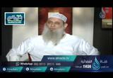 إدمان العبادة ( 19/7/2016) نسائم الندى