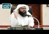 تفسير سورة آل عمران الآية (154-159)
