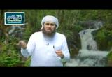 الله تكفل برزق الطائر لكنه لا يلقيه له في عشه ( 18/6/2016) ثمرات العقول