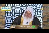 النكاح والسفاح ( 21/7/2016 ) بصائر
