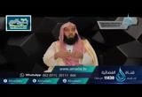 الحلقة 6 سورة آل عمران: من الآية 33 إلى الآية 41 (تفسير)