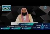 الحلقة 9 سورة آل عمران: من الأية 77 إلى الآية 85 ( تفسير)