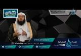 الحلقة 3 آل عمران: من الآية 14 إلى الآية 18 (تفسير)