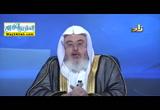 سورة النبأ-المحاضرة الثالثه ( 26/9/2016 ) التفسير