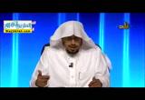 الضمير-المحاضرةالثالثه(26/9/2016)اللغةالعربيه