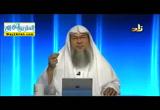الدرس التاسع - كف ورائحة النبى ( 15/10/2016 ) السيرة