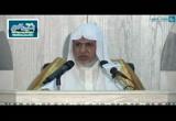 باب ما جاء في صيد الحرم و شجره (4ذي الحجة 1437ه) شرح كتاب الحج من المنتقى _ للمجد بن تيمية