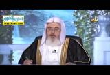 حكم الاحكام( 2/12/2016 ) بصائر