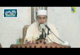 دعوة النبي صلى الله عليه وسلم للقبائل - السيرة الميسرة