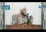 سيدنا عثمان بن عفان وفتح مصر (الخلفاء الراشدين)