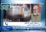 آخر المستجدات في اليمن وسوريا هاتفيًا د.محمد السيد الدغيم - شـ.عماد رفعت (21/2/2017) ستوديو صفا